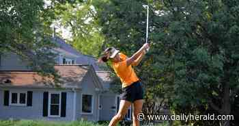 Girls golf: Record-setting Ohr continues to improve for Hersey