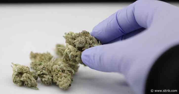 Advocates to drop their legal challenge over Utah's marijuana initiative