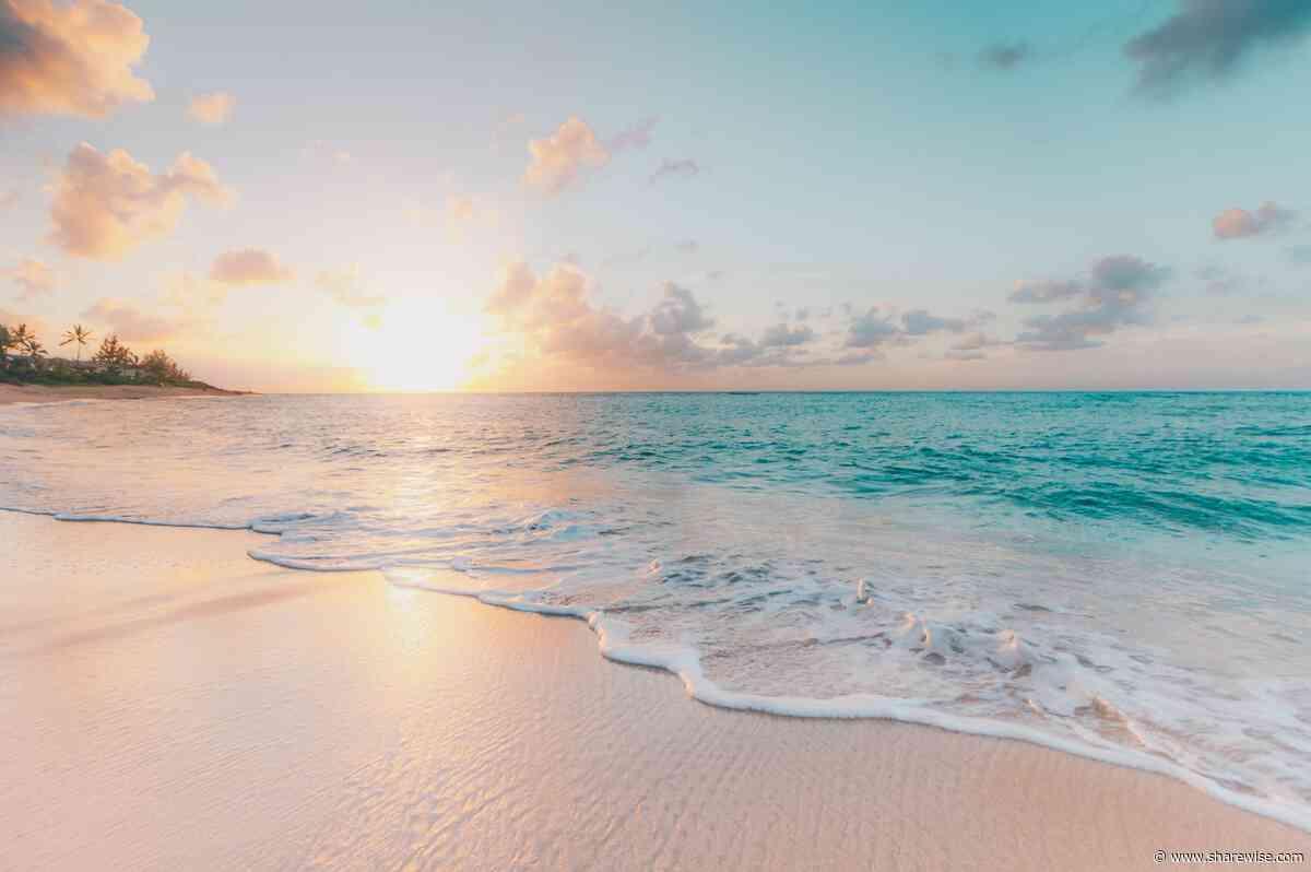 Ocean Protocol Kurs Prognose – folgt ein 10x? - sharewise