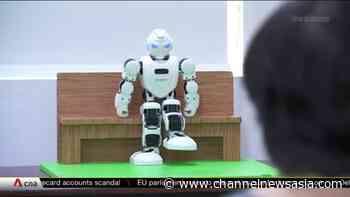 Therapy robots at Ren Ci Community Hospital keep seniors active | Video - CNA