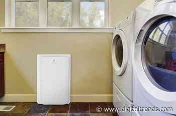 Improve air quality with the best dehumidifiers for 2020