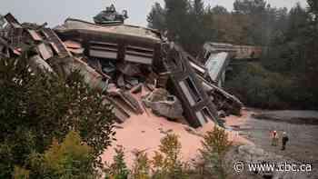 Cleanup underway after 60-car train derailment in Fraser Valley