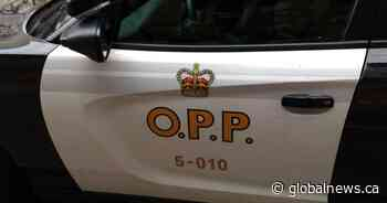 Vehicle pileup on Wolfe Island leaves teenager in critical condition: OPP - Global News