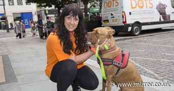 Street dog changes mobile vet's life as she vows to help homeless and their pets