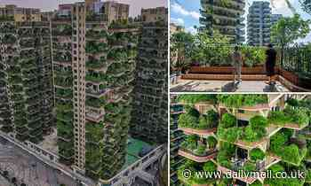 Residents shun Chinese 'vertical forest' housing project which attracted plagues of mosquitos