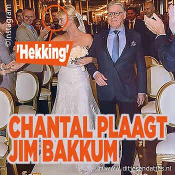 Zien: Chantal Janzen plaagt Jim Bakkum en laat trouwjurk zien - Ditjes en Datjes