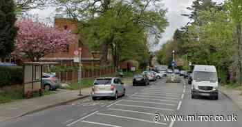 Man 'tries to snatch two schoolgirls, 11, near bus stop' sparking police manhunt