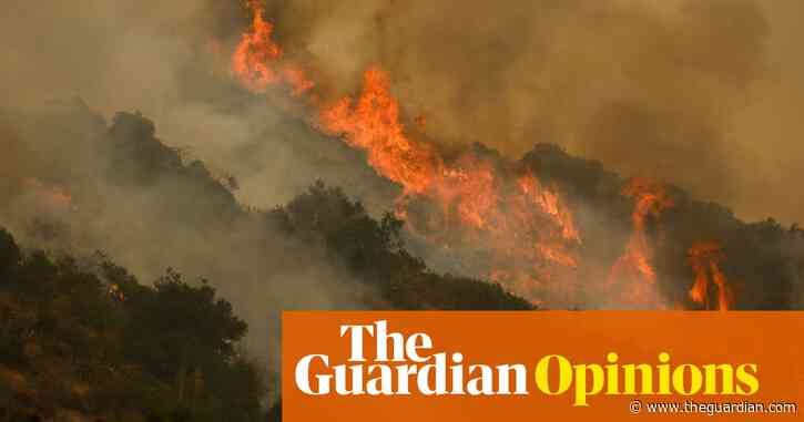 Our land was taken. But we still hold the knowledge of how to stop mega-fires | Bill Tripp