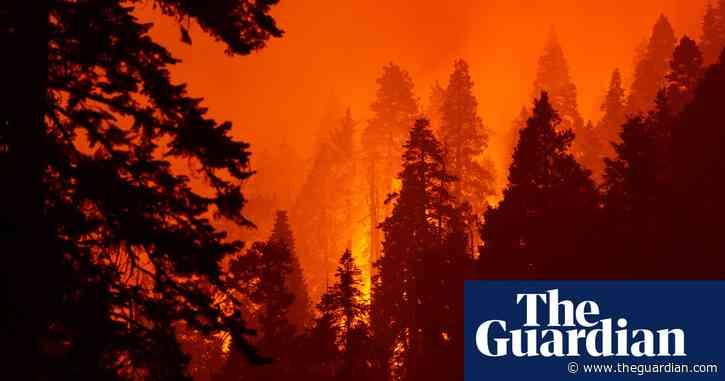 Firefighters make progress in west coast blazes as smoke spreads across US