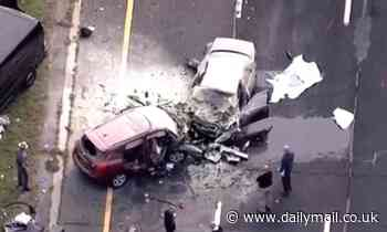 Father and daughter die in a horrific crash with a wrong-way driver that killed four in Long Island