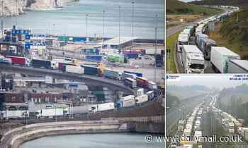 Motorists stuck in TEN HOUR delays as police conduct counter terror security checks at Dover docks