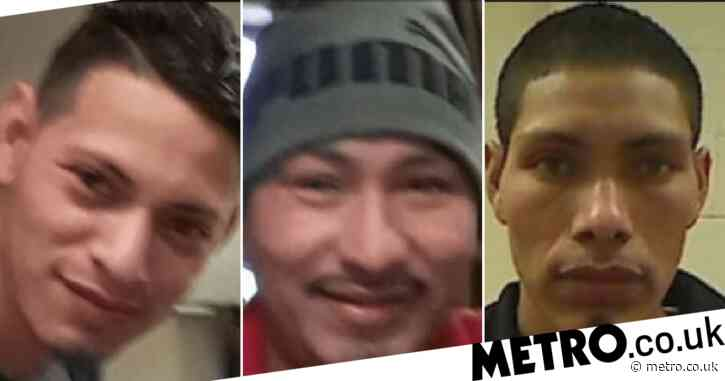 Three brothers 'broke into bathroom and took turns raping terrified girl, 10'