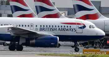 Coronavirus to see BA cut 10,000 jobs as airline struggles to survive