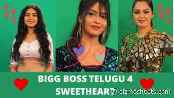 Bigg Boss 4 Telugu Opinion Vote: Divi Vadthya, Harika or Monal - Who is the Sweetheart of Bigg Boss Telugu Season 4? Vote Now! - Gizmo Sheets