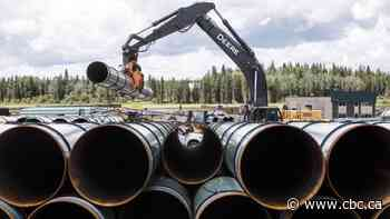 Trans Mountain pipeline expansion on schedule and on budget after 1st year, says CEO