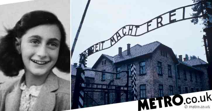 Vast majority of young Americans have no clue 6m Jews were killed in Holocaust