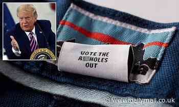 Patagonia sparks controversy by stitching 'vote the a**holes out' on clothing tags