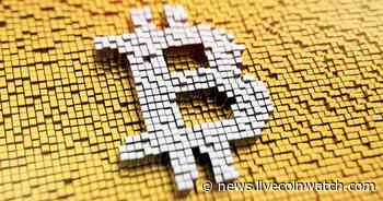 Know the Reasons Why you Should Purchase Bitcoin - Live Coin Watch News