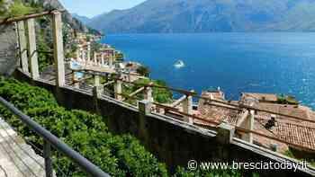 Limone: Visite alla limonaia del Castel - BresciaToday