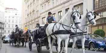 Wiener Hotels klagen über neue Stornowelle