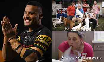 How SBS doco Struggle Street gave rising Penrith Panthers NRL star the drive to succeed