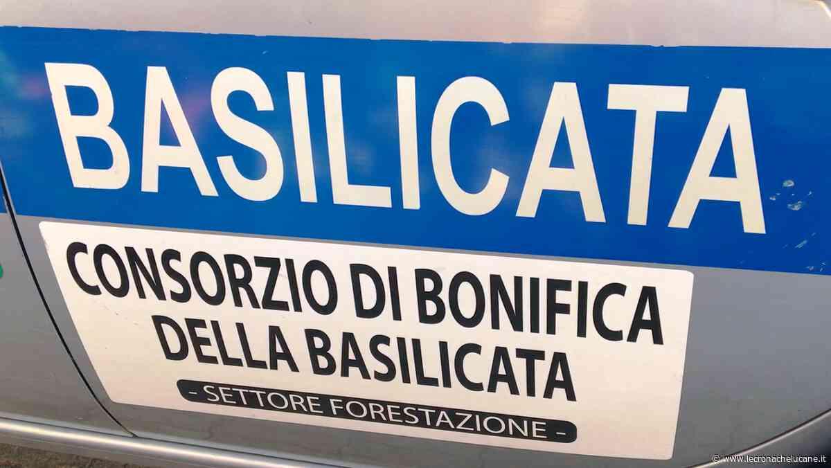 LAURIA: CONSORZIO DI BONIFICA DELLA BASILICATA - Cronache TV