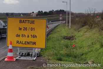 Battue administrative à Chambray-les-Tours : sangliers et chasseurs sont entrés dans la ville - France 3 Régions