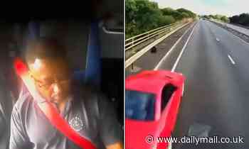 Horrific moment HGV driver using Google Maps on phone hits car leaving woman with broken spine