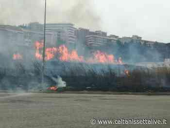 +++FOTONOTIZIA+++ Caltanissetta, incendio nei pressi della piscina comunale - CaltanissettaLive