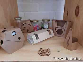 ¡Son de Illapel! Paquetes con diseños buscan sumar valor a los deliverys - El Día