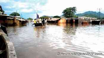 Flood claims one life, destroys over 900 houses in Zamfara — NEMA - Vanguard