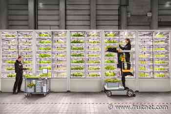 Infarm raises vertical farm funding