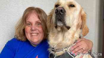 Ontario woman says she wasn't welcome in main area of hotel with guide dog