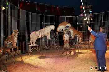 Mis en demeure, le maire de Ballancourt-sur-Essonne va abroger son arrêté anti-cirque avec animaux - Actu Essonne