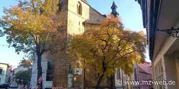 Fachwerkmuseum Ständerbau Quedlinburg und Klopstockhaus melden viele Besucher: Andrang trotz Corona - Mitteldeutsche Zeitung
