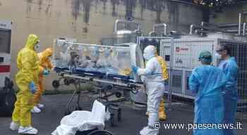 "Piedimonte Matese – Coronavirus, la ""strage"" dei veterinari: 12 positivi su 20 dipendenti Asl - Paesenews"