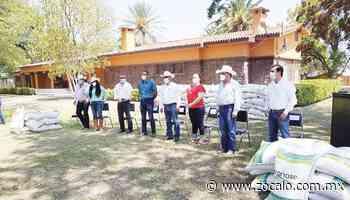 Benefician al campo de Morelos y Allende [Coahuila] - 04/09/2020 - Periódico Zócalo