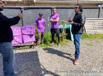 Negocios se suman a nuevo sistema delivery fundado en Concepción - Diario Concepción