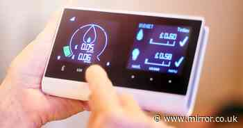 Energy firms planning to use smart meters to turn off your central heating