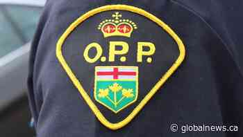 'These are trying enough times': OPP say vandals repeatedly targeted Elora, Ont., school - Global News