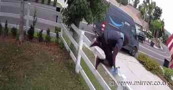 Amazon delivery driver leaps fence to escape giant dog who just wanted to say hi