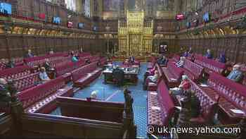 Health minister swears in Lords debate