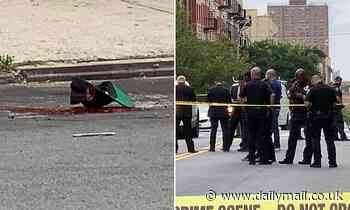 Cold-blooded gunman shoots father-of-one, 33, execution-style in The Bronx