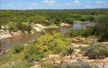 Caatinga é importante sumidouro de carbono atmosférico - Ciência e Clima