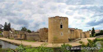 Visite guidée du château de Brie-Comte-Robert samedi 19 septembre 2020 - Unidivers