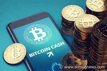 Bitcoin Cash (BCH) at Decision Stage! OK or Continue? - Somag News