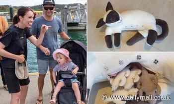 Jacinda Ardern's fiancé Clarke Gayford reveals baby daughter Neve's favourite toy