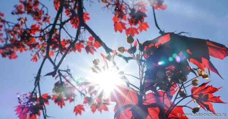 Sonne und sommerlich warme Temperaturen am Wochenende
