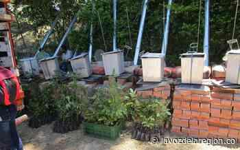 Inicia construcción de hornillas ecoeficientes en veredas de Iquira - Noticias