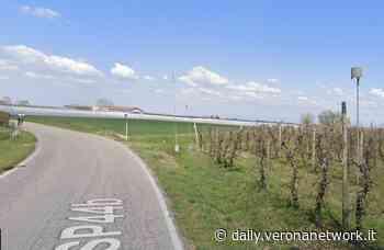 Bonavigo e Cavaion Veronese, a breve la realizzazione di piste ciclabili e pedonali - Daily Verona Network - Daily Verona Network
